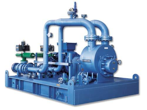 bornemann twin screw pump manual